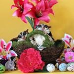 Easter #8