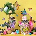 Easter #9