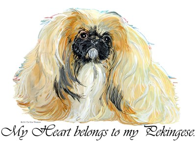 Love my Pekingese