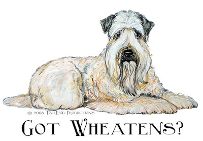 Wheaten Terrier Dog Collection