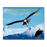 2013 Wildlife and Nature Calendars