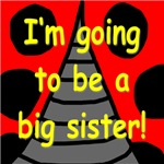 For Big Sisters