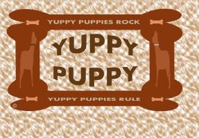 PETS/YUPPY PUPPY