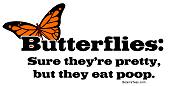 Butterfies Eat Poop