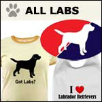 Labrador Dog Gifts