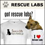 Rescue Lab Gifts