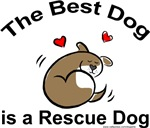 Best Dog Rescue Dog
