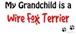 Wire Fox Grandchild