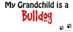 Bulldog Grandchild