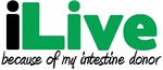 iLive Intestine