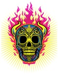 Colorful skull Flames