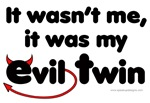 It wasn't me (Evil Twin)