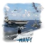 Navy Fleet
