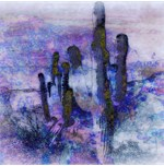 Saguaro Cacti Southwestern Evening Colors