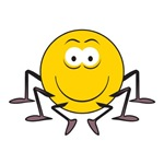 Spider Smiley Face
