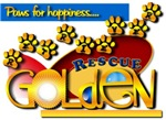 Golden Retriever RESCUE - Paws for Happiness!