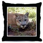 Cougar Throw Pillows