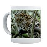 Leopard Sundari Mugs