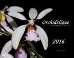 2016 Orchid Calendar