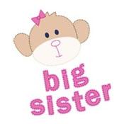 big sister monkey