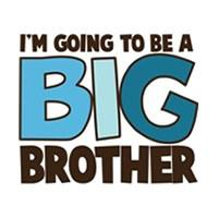 i'm going to be a big brother block style