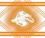 Orange Football Soccer