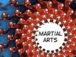Martial Arts Sun Gifts