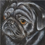 DOGS - 'THE BLACK PUG'
