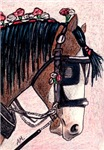 HORSES - SHIRE HORSE 2