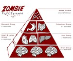 Zombie Food Pyramid