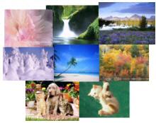 New! Calendars 2012