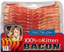Kitten Bacon