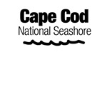Cape Cod National Seashore (Doodle)