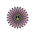 Pink and Yellow Peace Flower