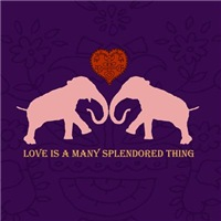 Elephant Love Medley