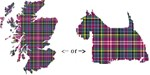 Scotland Map / Scottish Terrier
