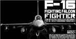F-16 Fighting Falcon #2