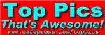Top Pics Signature Designs