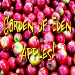 Garden of Eden Apples!