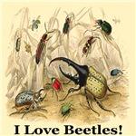 I Love Beetles Remastered