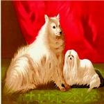 Pomeranian Cassell 1881 Digitally Remastered