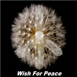 * On Sale * Wish For Peace Dandelion First Edition