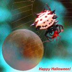 Star Spider Happy Halloween