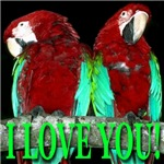 Two Parrots I Love You Jade Wings