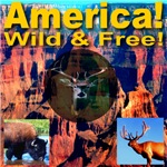 America! Wild & Free!
