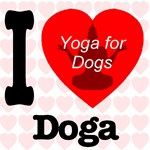 I Love Doga: Yoga for dogs