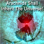 Arachnids Shall Inherit The Universe