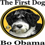 Bo Obama The First Dog