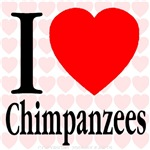 I Love Chimpanzees