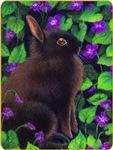 Bunny & Violets